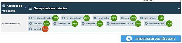 Analyse de la page une fois en ligne.
